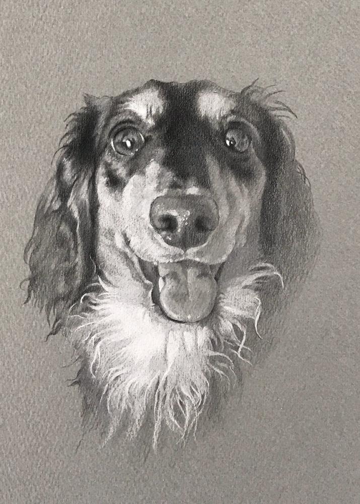 素敵な笑顔で笑い掛けるダックスを描いたペットアート