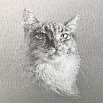 ペットアートの猫