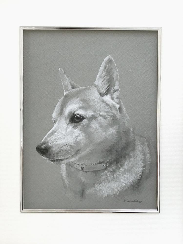 モノクロペットアートで描いた芝犬の全体像。マット紙入り額装。