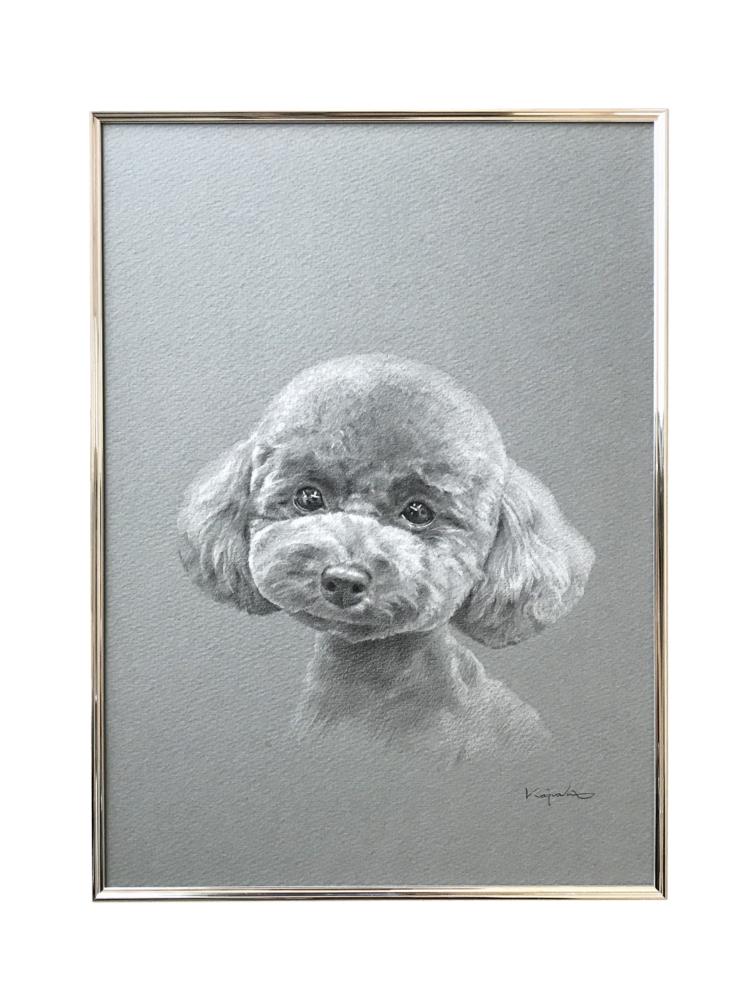 完成したモノクロパステルで描くペットの似顔絵「ブラウにー」