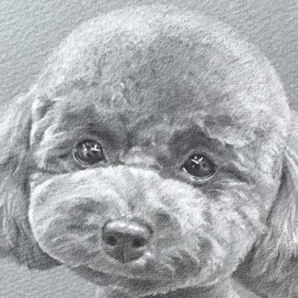 ブラウニーのペットの似顔絵イラスト