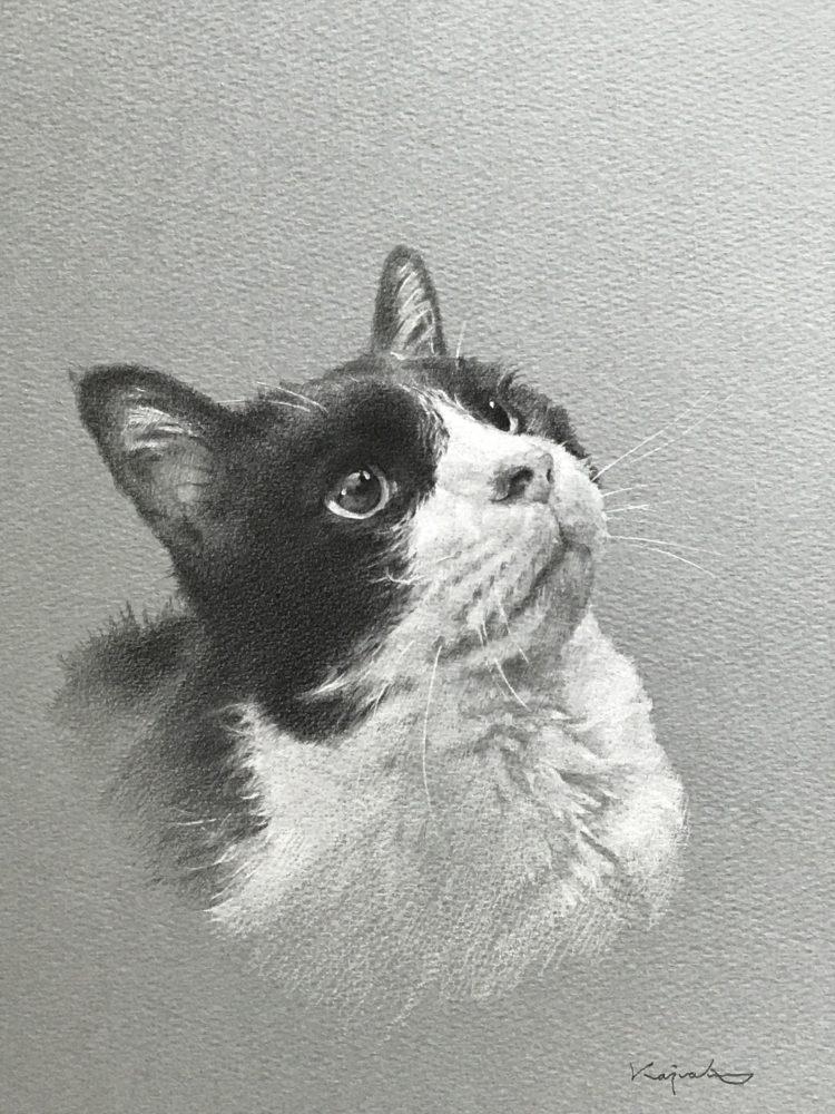 ペットの似顔絵イラストロドリゲス