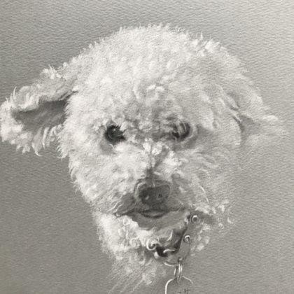 くるみちゃんのペットの似顔絵肖像画